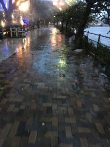 福岡台風直撃