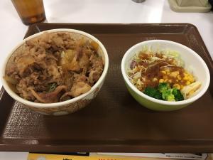 すき屋の牛丼ライトとサラダ