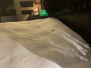 沼津のラブホテルのソフィアの部屋の画像