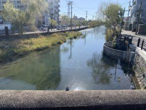柳川の市内の画像